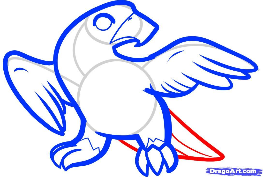 How To Draw A Falcon For Kids Step By Step Animals For Kids For Kids Free Online Drawing Tutorial Added By Online Drawing Guided Drawing Animals For Kids