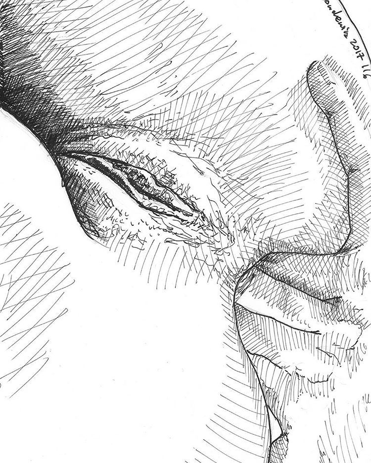 How many fingers do women like