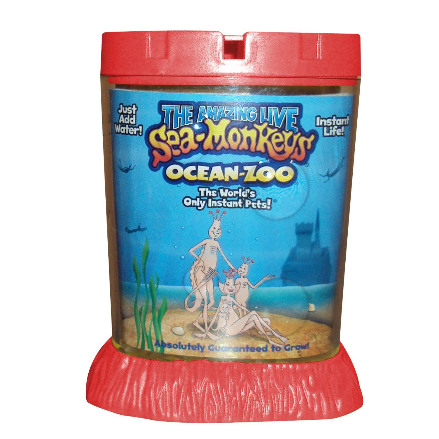 Grow Your Own Sea Creatures With The Amazing Life Sea Monkeys