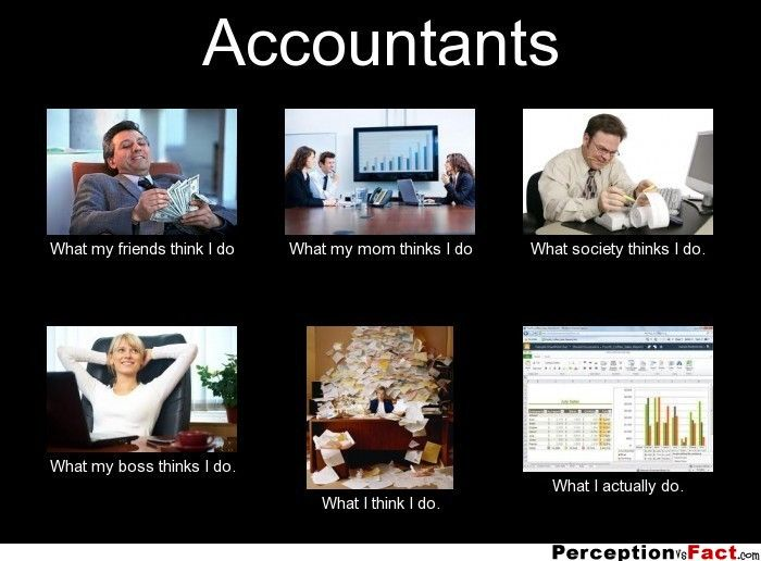 Accountants What People Think I Do What I Really Do