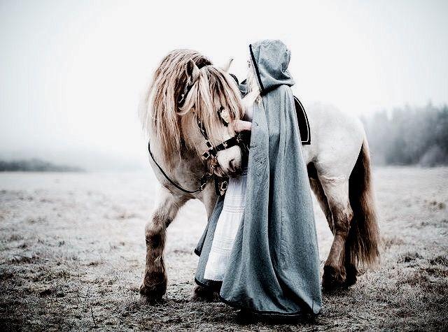 Cinderella   The North Realm