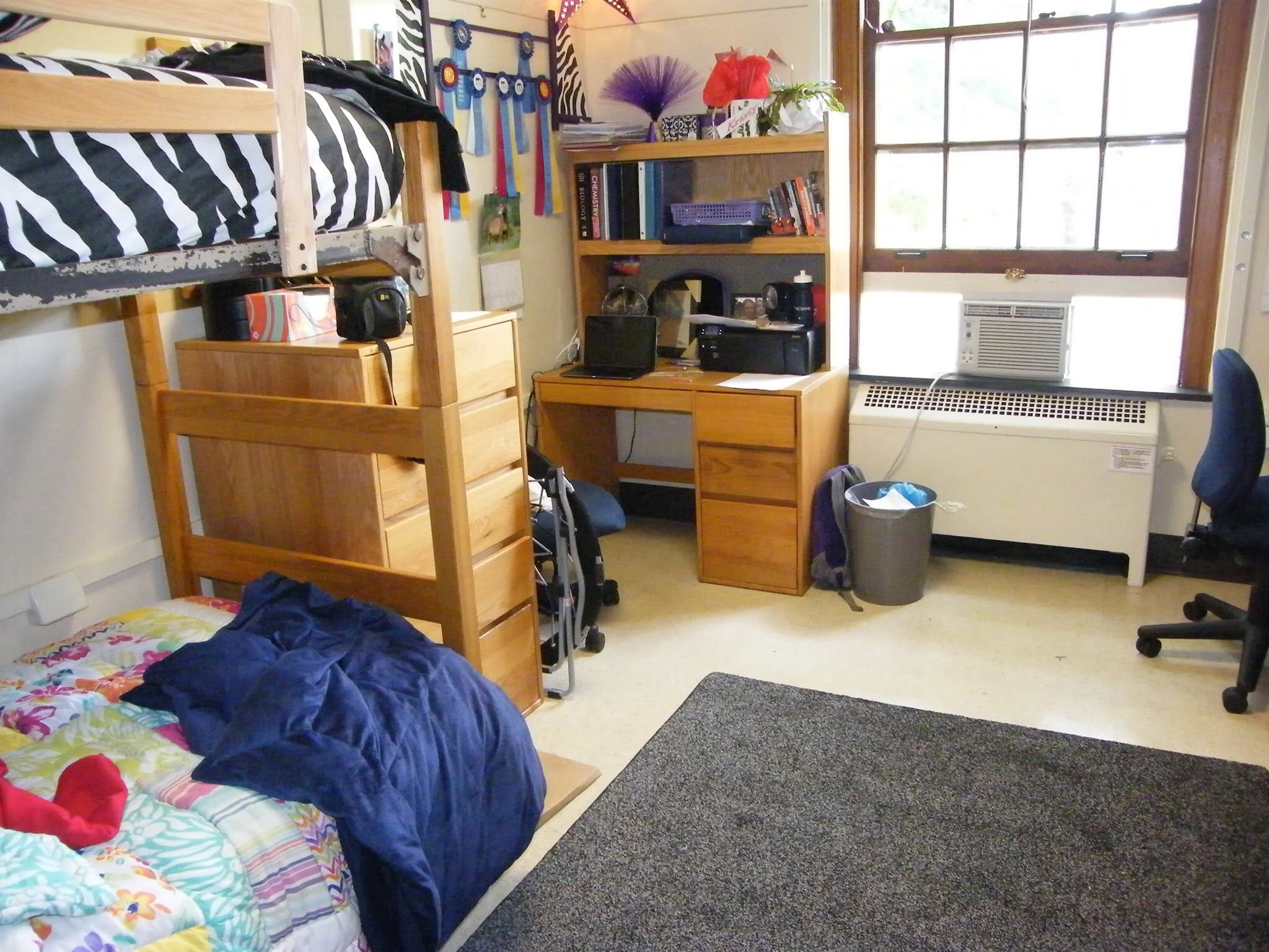 Porter Hall Dorm. Dorm RoomsMiami UniversityCollege ... Part 25