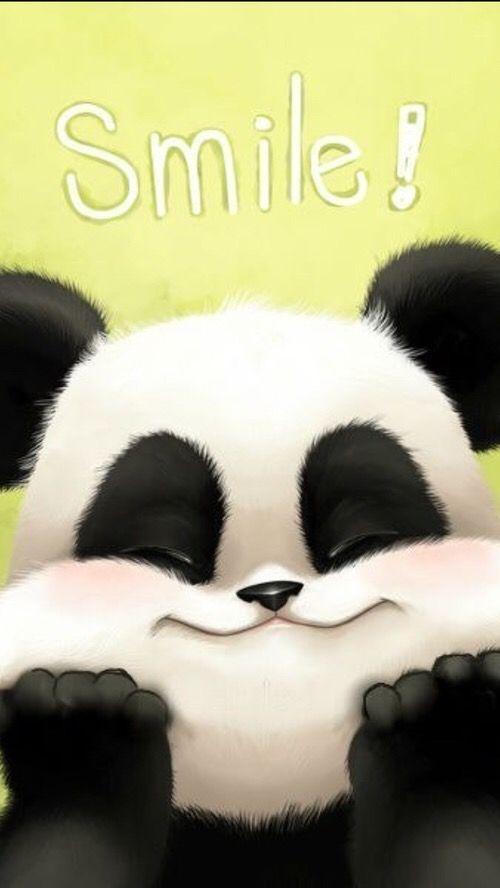 Pin By Claudia On Wallpapers Cute Panda Wallpaper Panda Love Panda