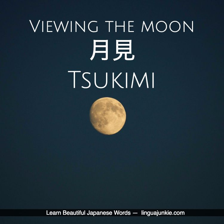 For Learners 50 Beautiful Japanese Words Phrases Pt 7 With