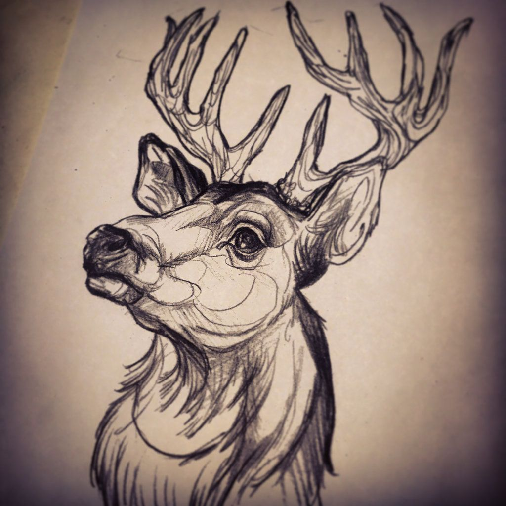 neo traditional stag google search tattoo ideas