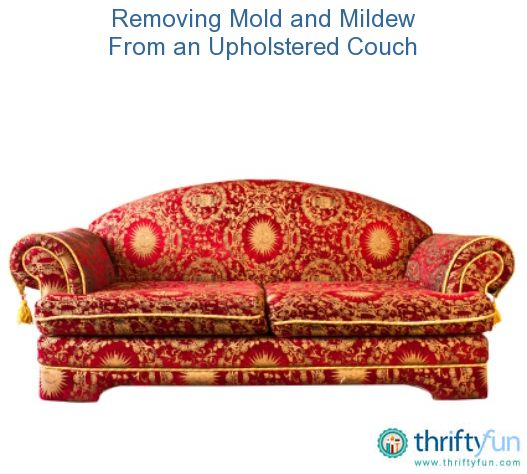 Removing Mold And Mildew From An Upholstered Couch Clean Couch