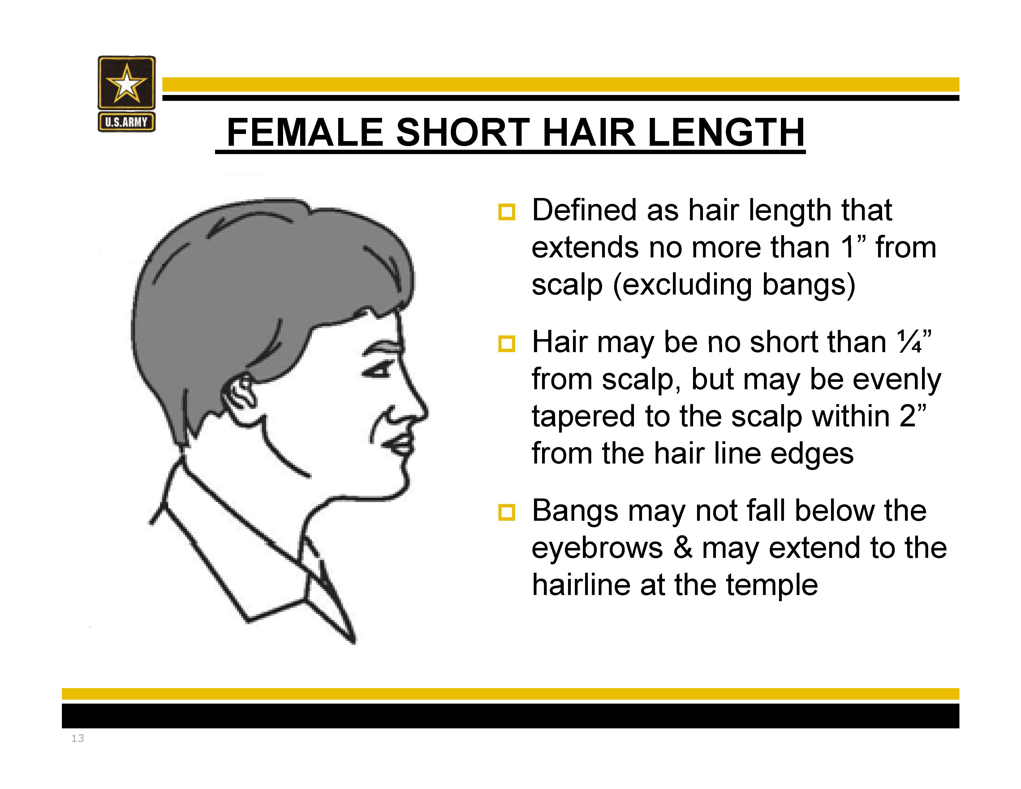 New Army Hair Regulations Ar 670 1 As Of 31 March 2014 Shorthair