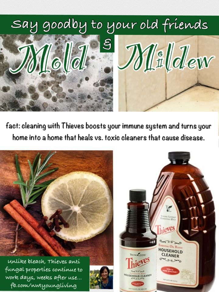 thieves household cleaner for mold and mildew oily mommie ashley sanford 1685572 essential. Black Bedroom Furniture Sets. Home Design Ideas