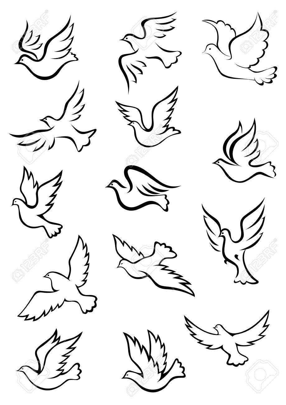 Image Result For Imagenes De Palomas Para Dibujar Contorno De Aves Paloma Ave Dibujos De Palomas