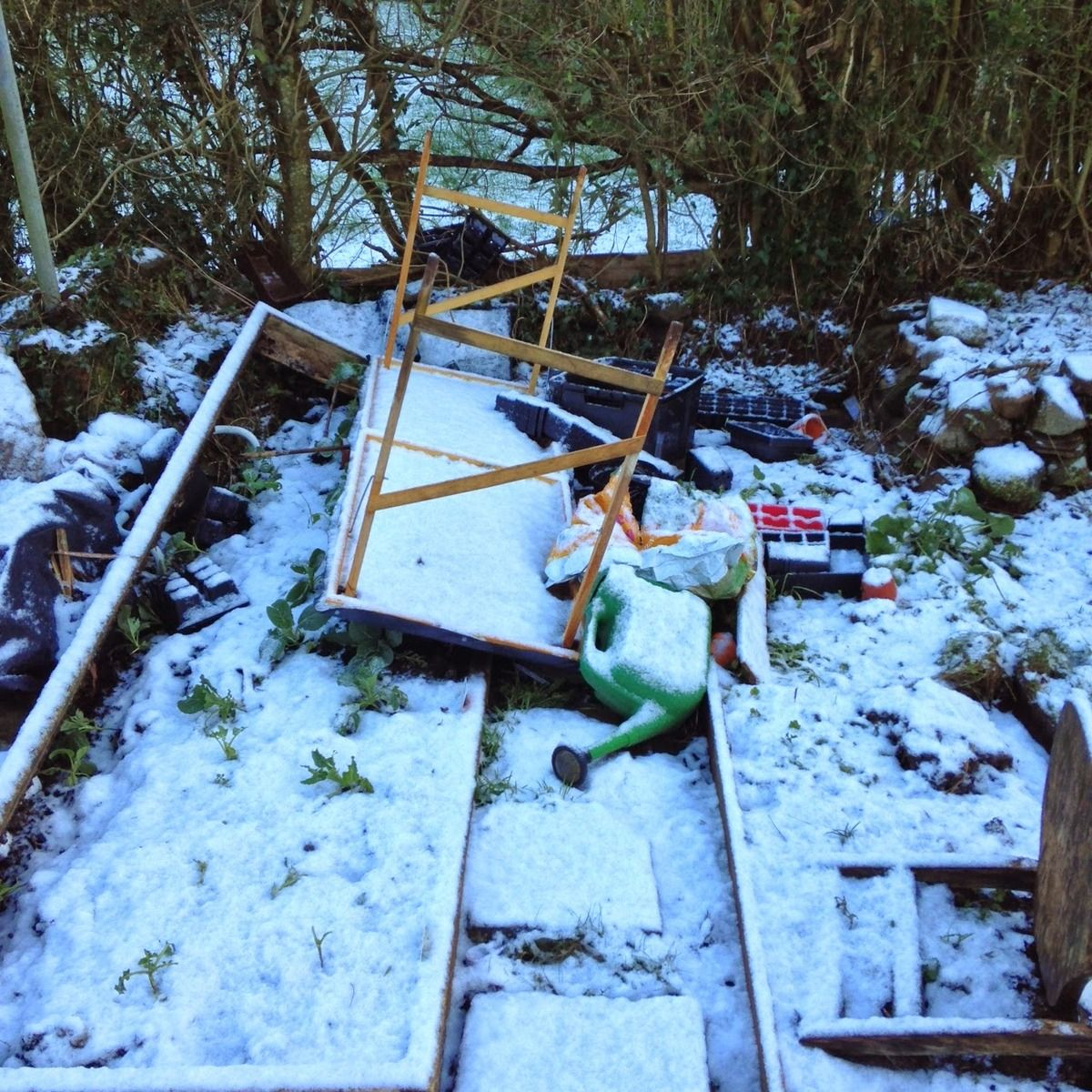 A Polytunnel Disaster #gardening #garden #DIY #home #flowers #roses #nature #landscaping #horticulture