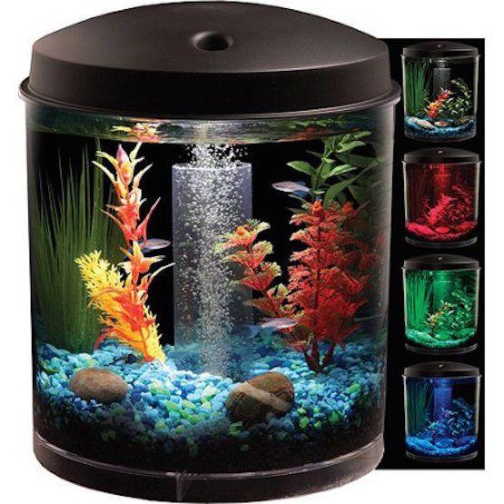 Small Fish Tank Starter Kit 2 Gal Aquarium Changing Led Lights Kids Office Gift Aquarium Kit Small Fish Tanks Aquarium Fish Tank