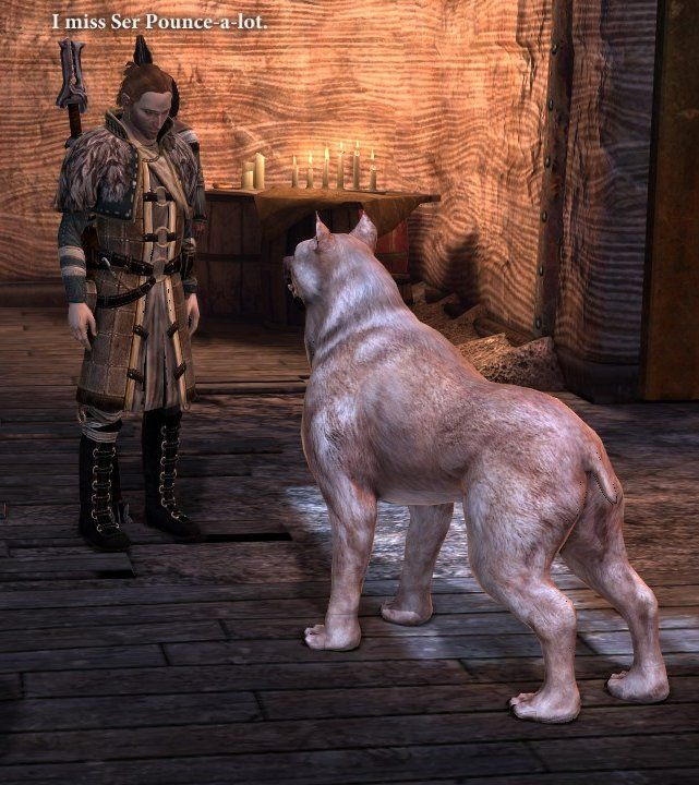 """kosmonauttihai: """" """"Anders: I miss Ser Pounce-a-lot. """" Give this mage a cat. """""""