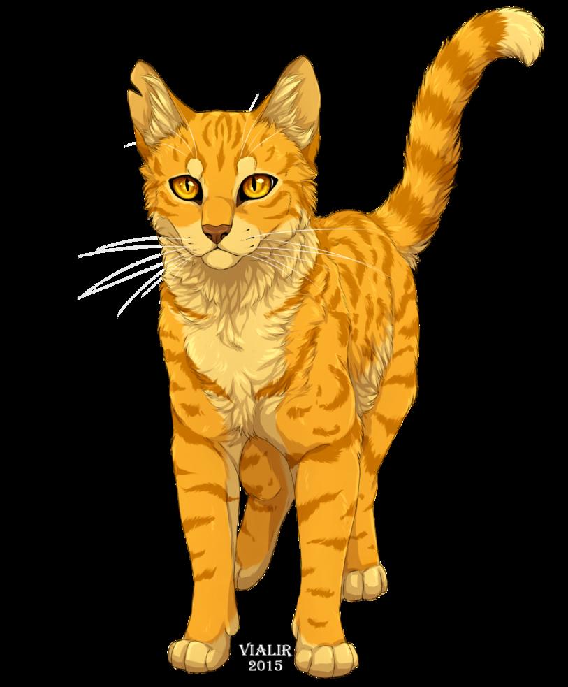 Výsledek obrázku pro warriors cats lionblaze