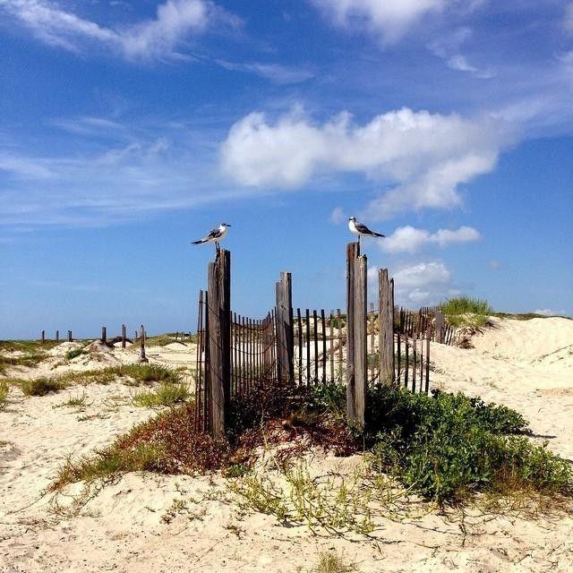 Mustang Island Beach: Mustang Island State Park #texastodo #texpert