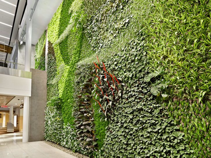 Edmonton Airport Unveils Massive Air Cleaning Living Green Wall! Good Ideas