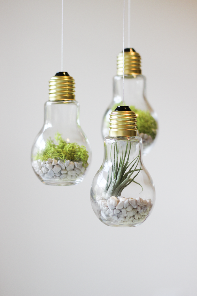 Great DIY Lightbulb Terrariums | Cladandcloth.com 2 Pictures