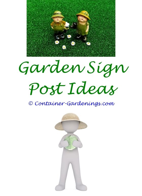 Biological Garden | Box garden, Garden ideas and Terraced garden