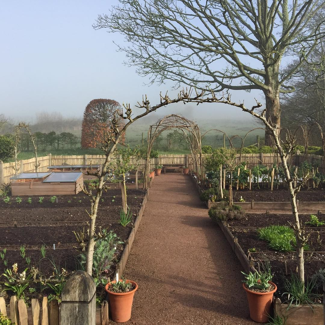 Arne Maynard | Garden Potager Parterres & Formal | Pinterest ...