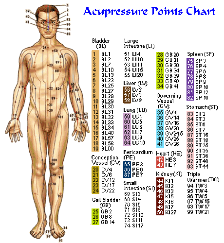 acupressure point chart: Acupressure shiatsu beck rub pressure points pinterest