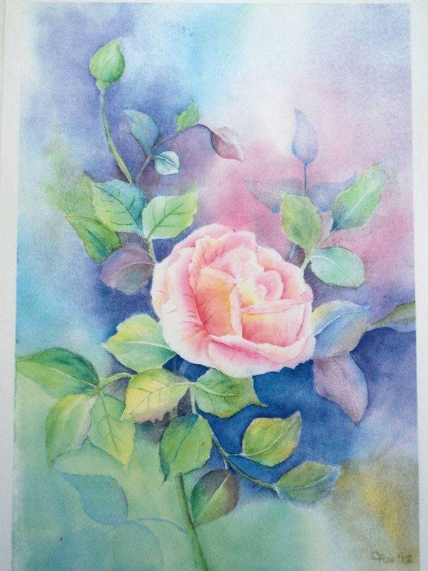 Exquisite rose.