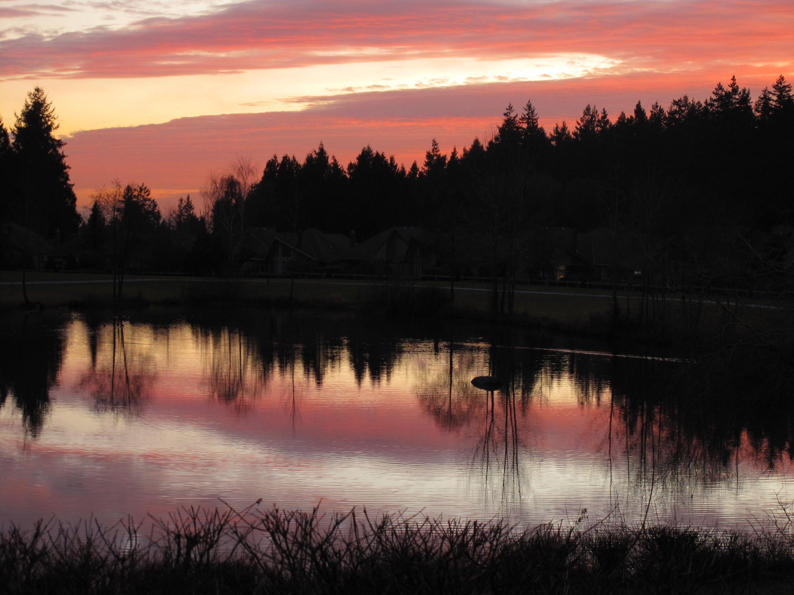 Boundary Park, Surrey BC Canada