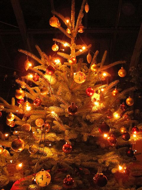 A Christmas Sanctuary *I LOVE CHRISTMAS Pinterest Christmas