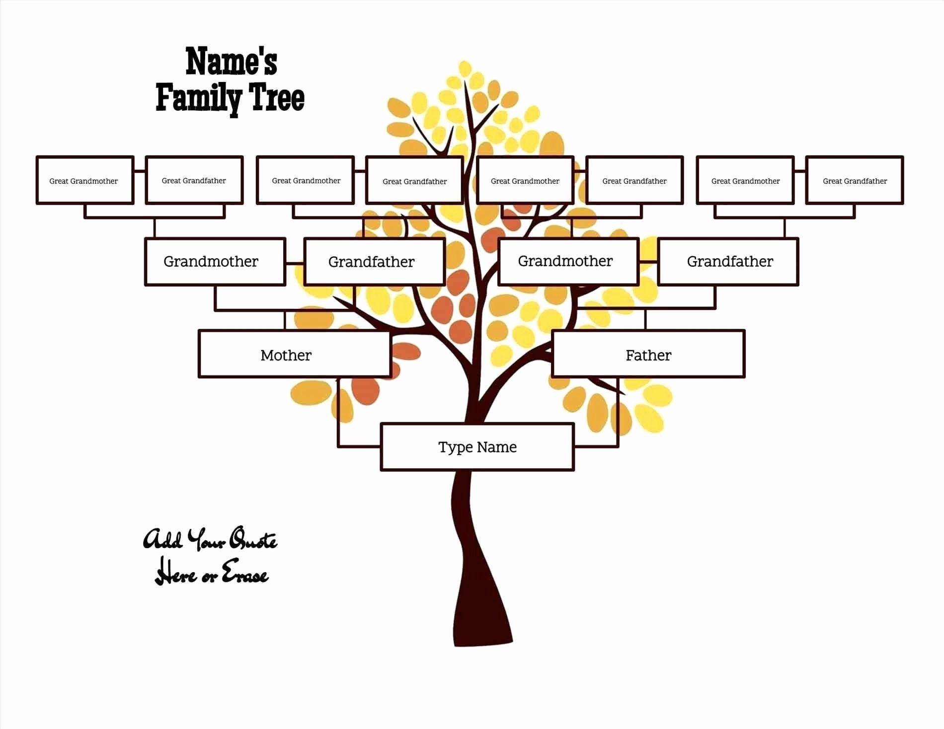 40 Editable Family Tree Template Family tree template