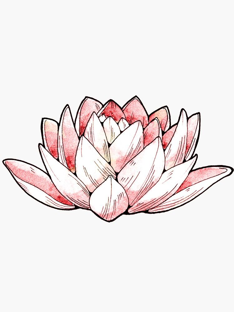 Lotus Flower Sticker Aesthetic Stickers Tumblr Stickers Stickers