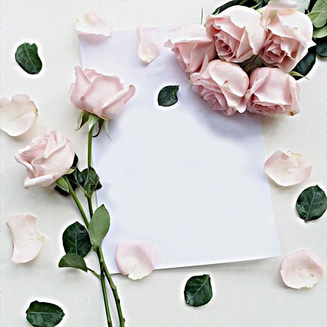 خلفية من حساب Noory Vip 3 Noory Vip 3 Noory Vip 3 خامات خلفيات للتصميم مخطوطه مخطوطات لل Pretty Phone Wallpaper Flower Frame Flower Quotes
