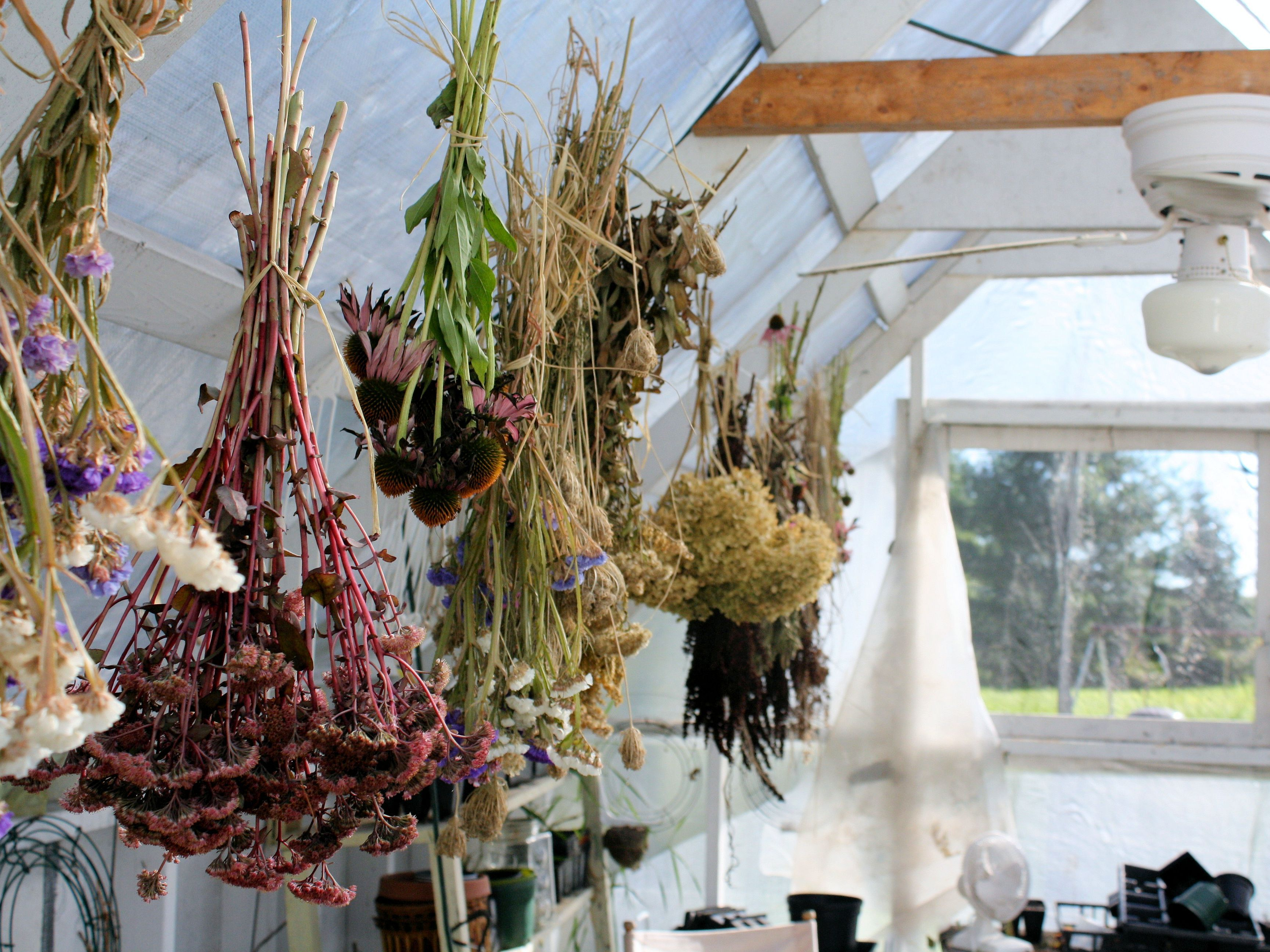 Image result for Drying Herbs