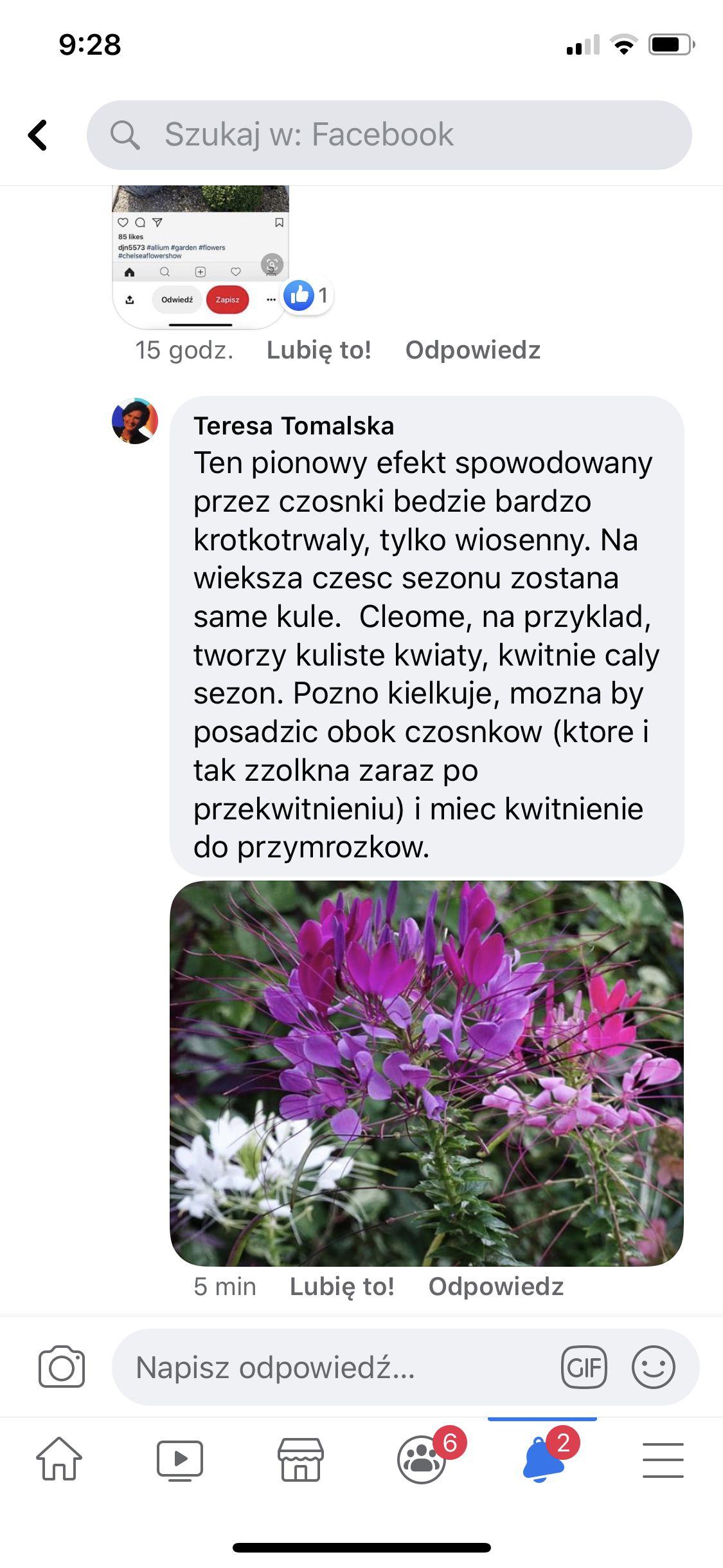 Pin By Anna Wilczarska On Kwiaty In 2020