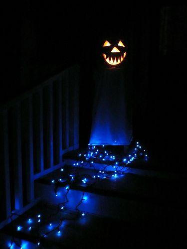 Pin by Kelly Davies on Halloween Pinterest Blue christmas lights