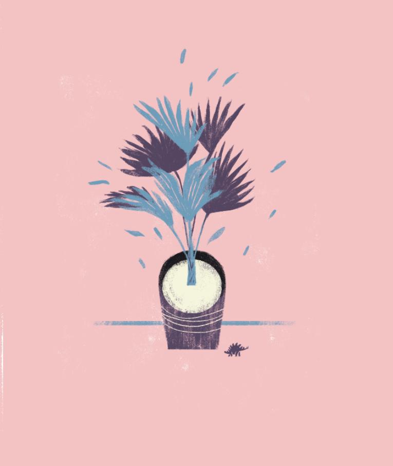 Palm on Behance