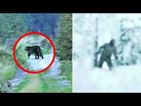 5 Unsolved Mysteries That Cannot Be Explained #4 | strange | Mystery