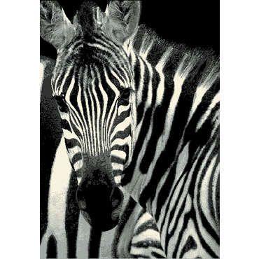 tapis 120x170 cm bengale zebre pas