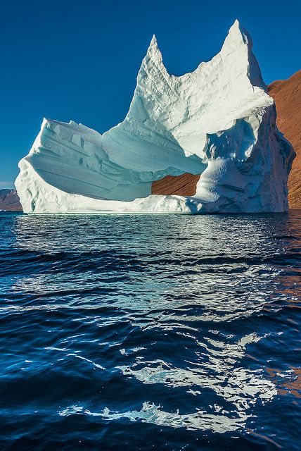 Arctic Throne by janet little, via Flickr