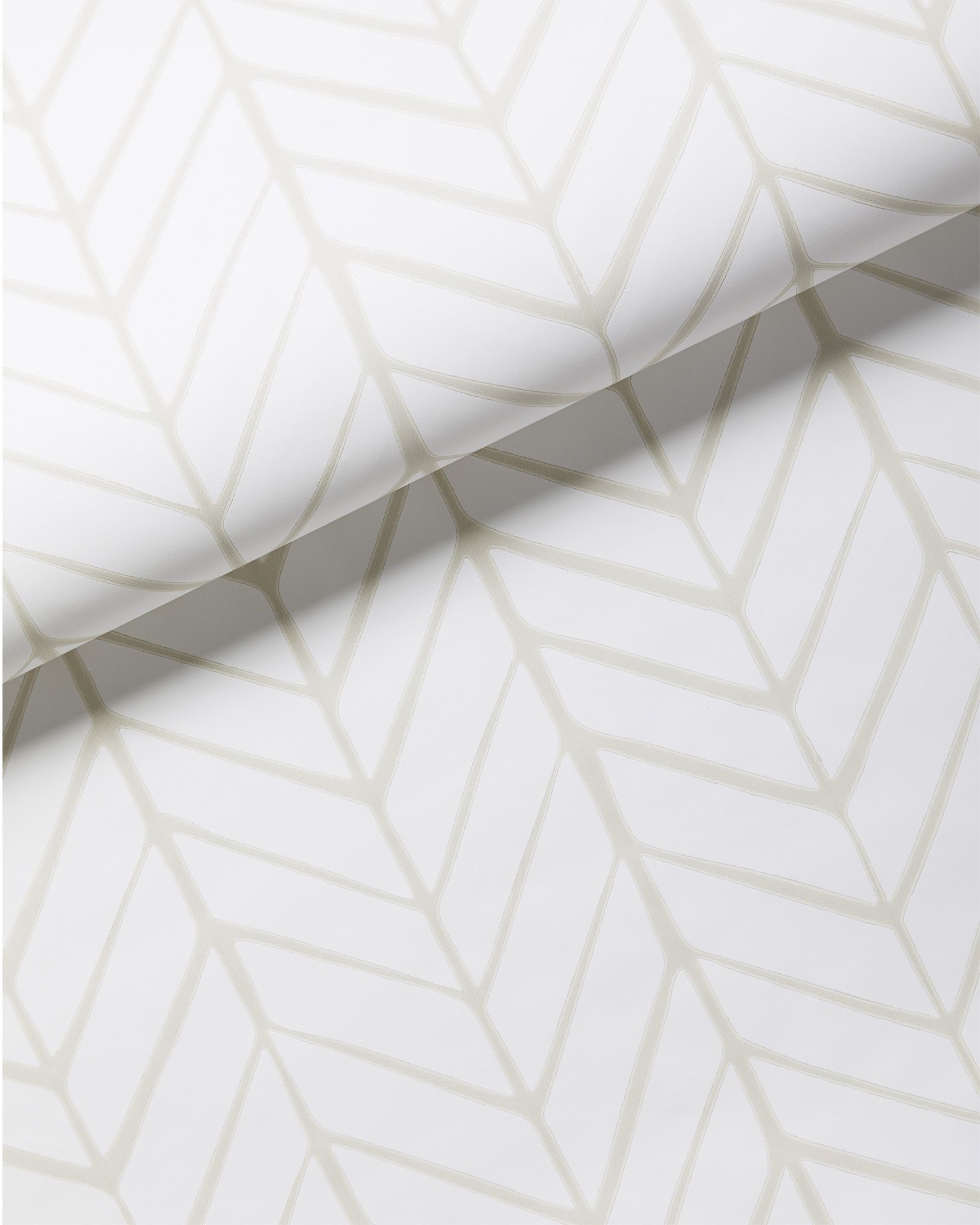 Feather wallpaper in products pinterest wallpaper