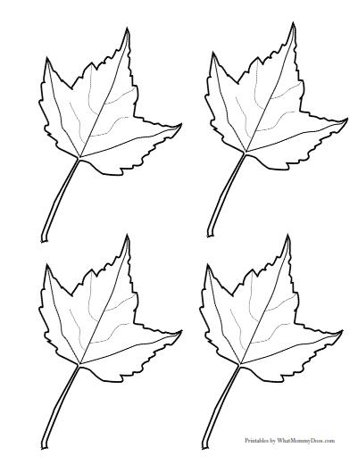 free printable maple leaf patterns large medium small templates