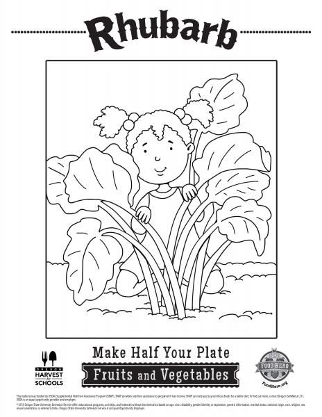 Rhubarb Coloring Pages Food Hero - Rhubarb - Great healthy - copy coloring pages of vegetables
