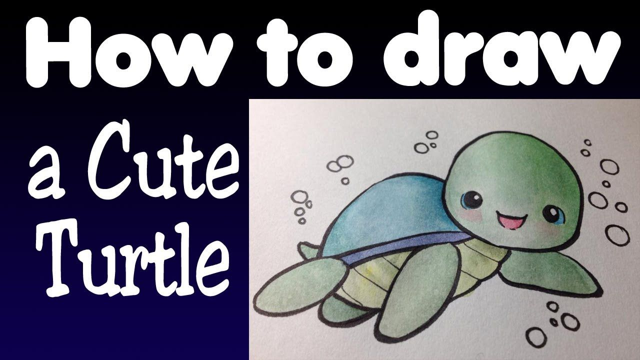 Baby Turtle Drawing  How To Draw A Cute Turtle  Youtube
