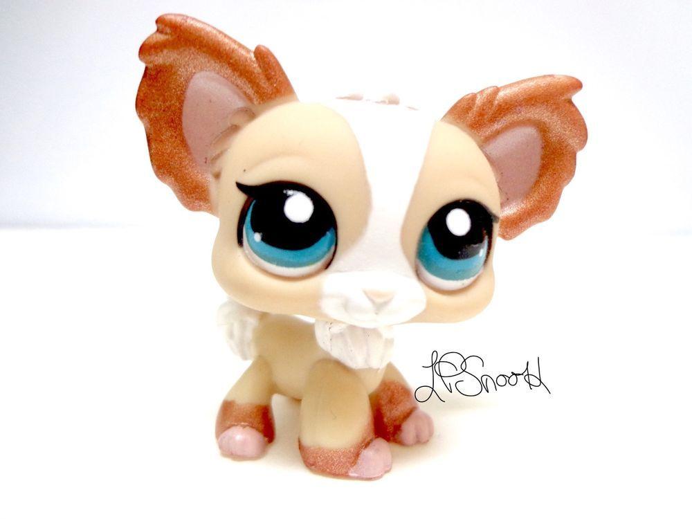 Lps 1082 Cream Tan White Bronze Shimmer Chihuahua Dog Rare
