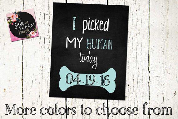 I Picked My Human Sign Pet Adoption Sign Dog By Jujuandbeanprints