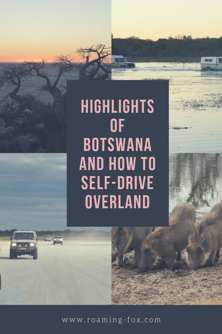 Highlights of Botswana and how to self-drive overland