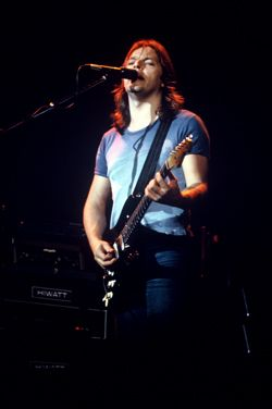 Pink Floyd 1977 Animals Tour - 8x12 Photos