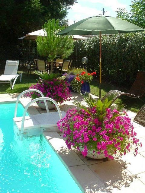 Pool landscaping great idea to put umbrellas in pots - Flowers And Gardens