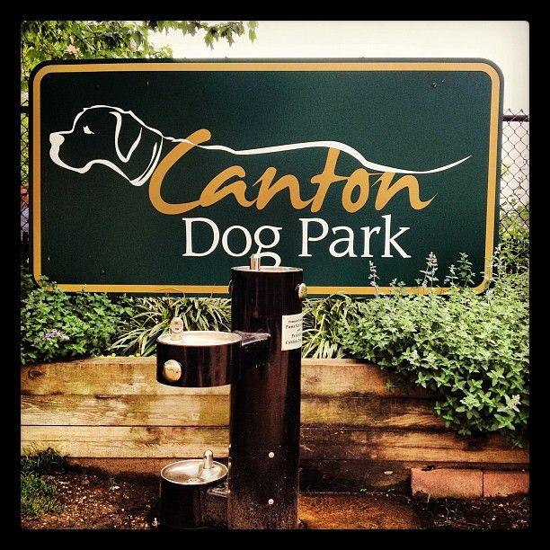 Canton Dog Park Baltimore Md