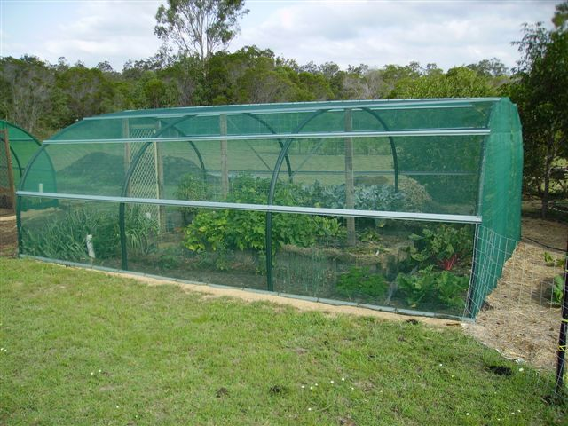 Organic Gardening Tips For Beginners Shade House Garden