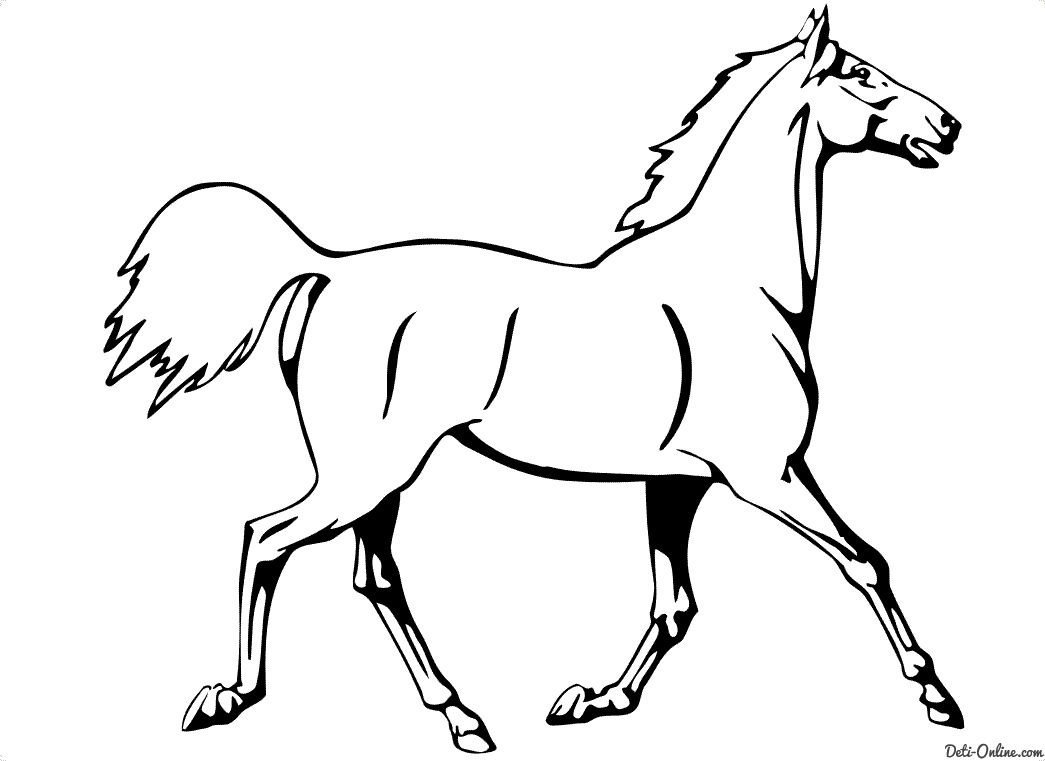 Pohozhee Izobrazhenie Horse Coloring Pages Puppy Coloring Pages