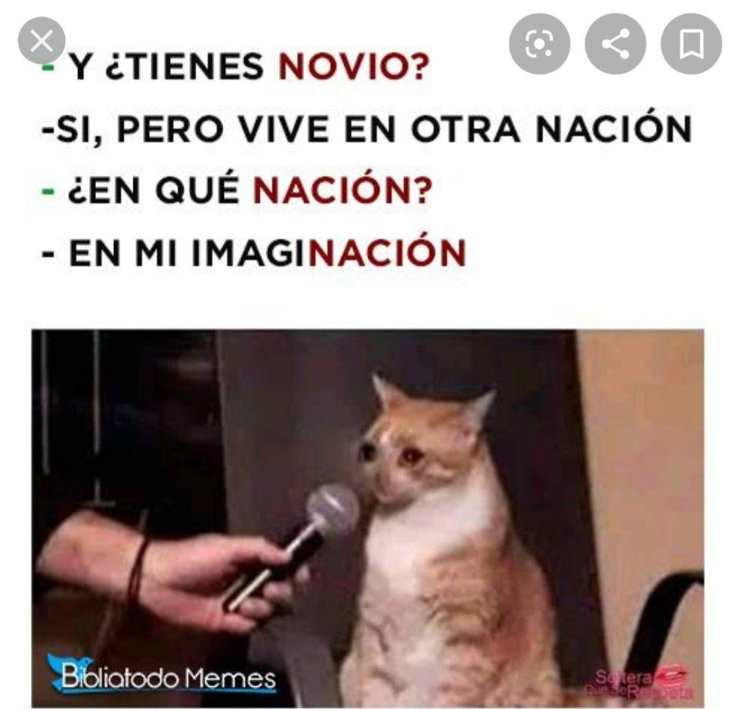 Pin De Valentina En Memes Memes Divertidos Memes Graciosos De Amor Memes Informaticos