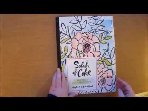 Splash Of Color Painting And Coloring Book By Liz Libre Colouring Book F Coloring Books Color Splash Paint Colors